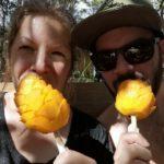 tulum-mango-am-stiel