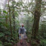 Monteverde-Nebelwald-Manuel