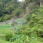 Boquete-Pipeline-Trail-Aussicht