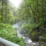 Boquete-Pipeline-Trail-Gruen