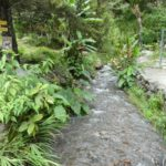 Boquete-Pipeline-Trail-Weg