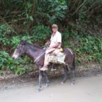 Minca_Birdwatching_Pferd