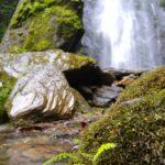 Salento_Wasserfall_Farn