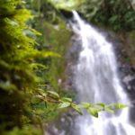 Salento_Wasserfall_weiß