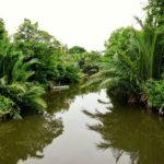 Bangkok_Bang_Krachao_Wasser