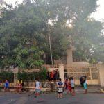 Makassar_Mangos