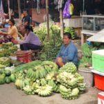 Toraja_Markt_Bananen