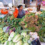 Toraja_Markt_Gemuesefrau