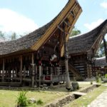 Toraja_Tongkanan_seitlich