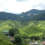 Cameron_Highlands_Panorama