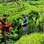 Bali_Tegallalang_Manuel