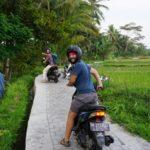 Bali_Tegallalang_Roller