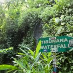 Bali_Ubud_Tibumana