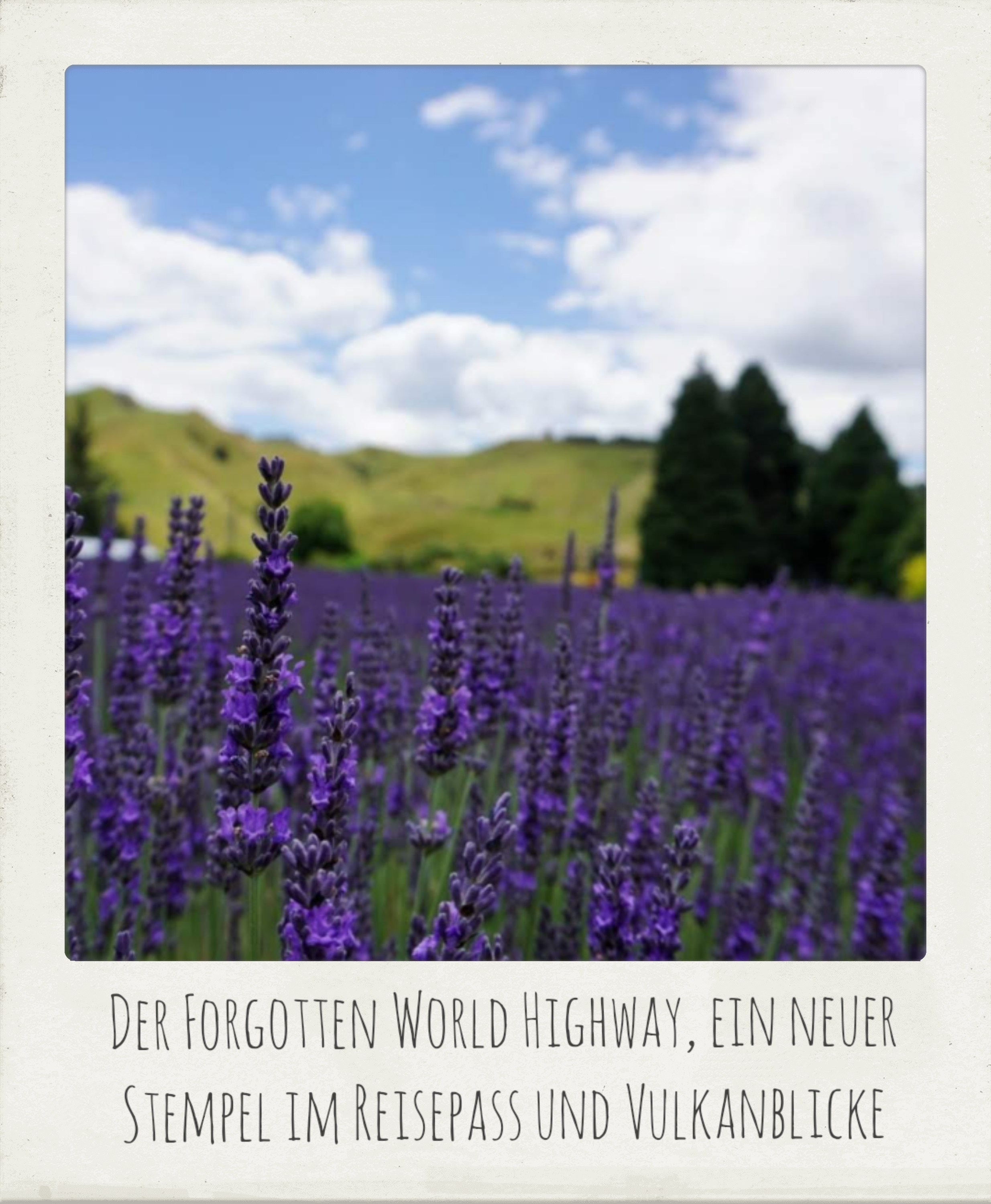 Neuseeland, Forgotten World Highway