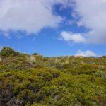 Tongariro_Himmel